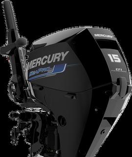 SeaPro™ FourStroke SeaPro™ FourStroke 15 hp