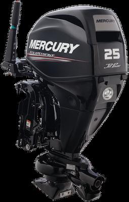 2000 mercury 40 elpto manual