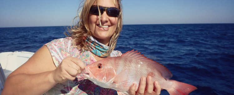 Red Snapper Update